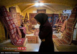 Bazarche Farsh 5 Kh