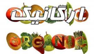 organik 01