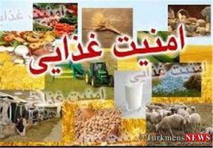 Amniat Gaza