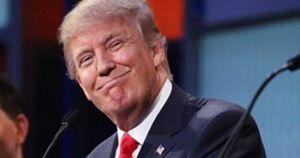 Trump TN News