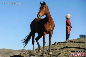 JashnVareh Asb Turkman 2