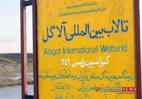 Talab Alagol 10 F